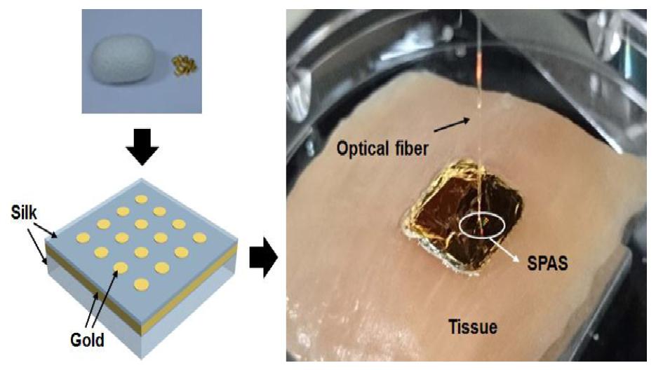 A Highly Tunable and Fully Biocompatible Silk   Nanoplasmonic Optical Sensor